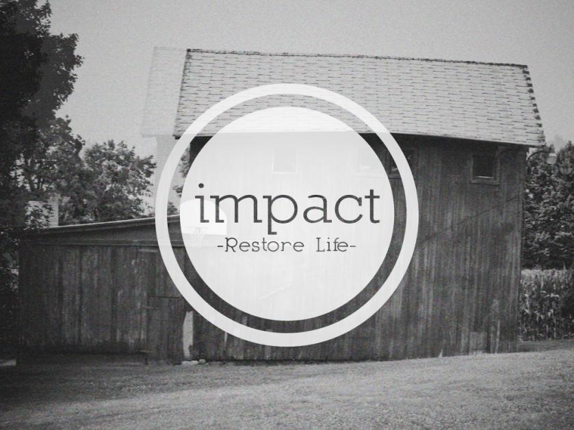 Impact Community Non-Profit Management